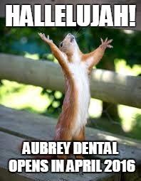 Squirrel Appreciation Day.  Coming April 2016.